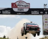 FAFE CANDIDATA ALL'EUROPEO